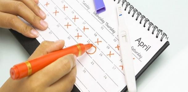 Těhotenská kalkulačka aneb těhotenství týden po týdnu
